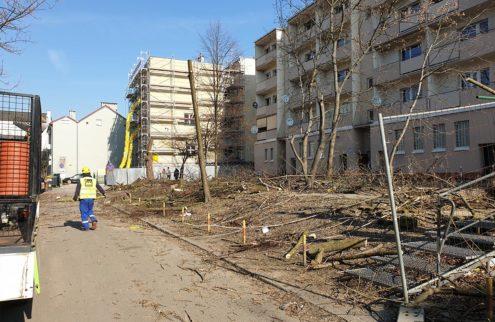 fabryka-ogrodow-rewitalizacja-ulicy-krakowskiej-2