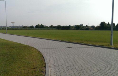 fabryka-ogrodow-trawnik-przy-hali-2