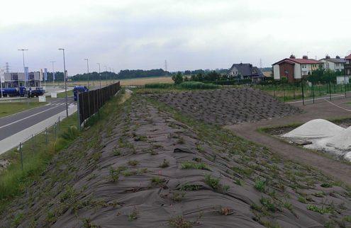 fabryka-ogrodow-zielen-przy-boisku-niwelacja-terenu-trawniki-nasadzenia-3